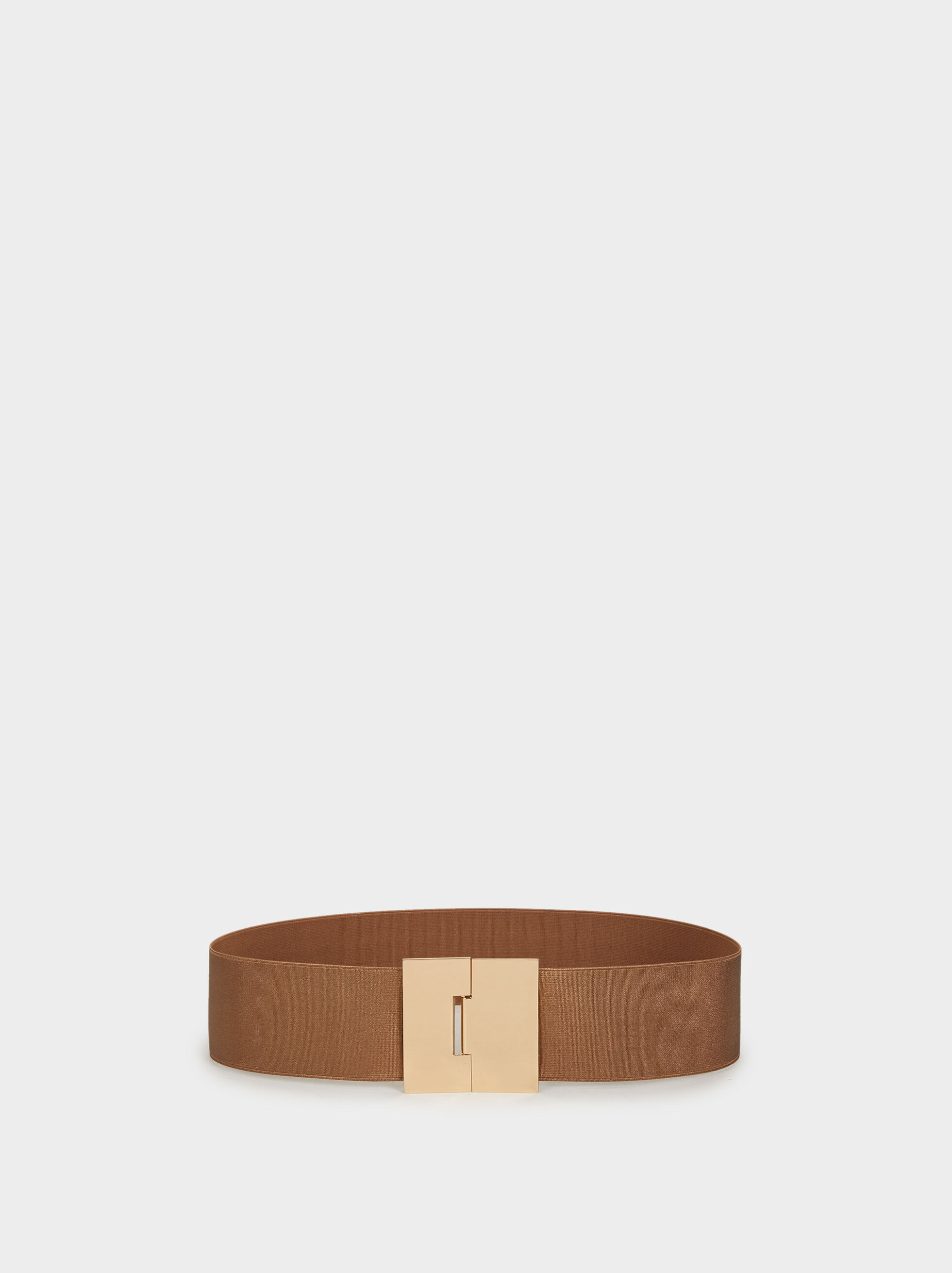 Elasticated Belt With Metallic Detail, Golden, hi-res