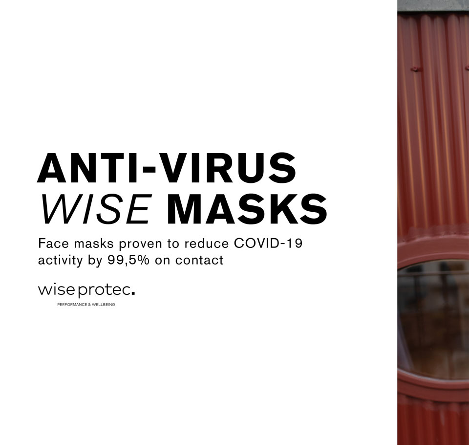 Wise Masks